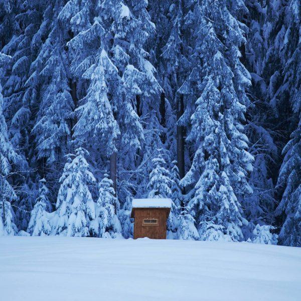 The cabin 🏚 Pentax K-1 II + 24-70mm f2.8 Powered by @foto.hebenstreit #nature ...