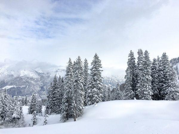 Der Moment, wenn du in eine verschneite Winterlandschaft eintauchen kannst - unbezahlbar!⠀⠀⠀⠀⠀⠀⠀⠀⠀ Frau Holle hat die letzten...