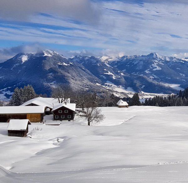 Winterwandern mit Aussicht... 😍❄️ dieser Schnee ist traumhaft! ❄️😍 🗻Zur Hochälpelealpe gelangt man über einen schönen Winterwanderweg...