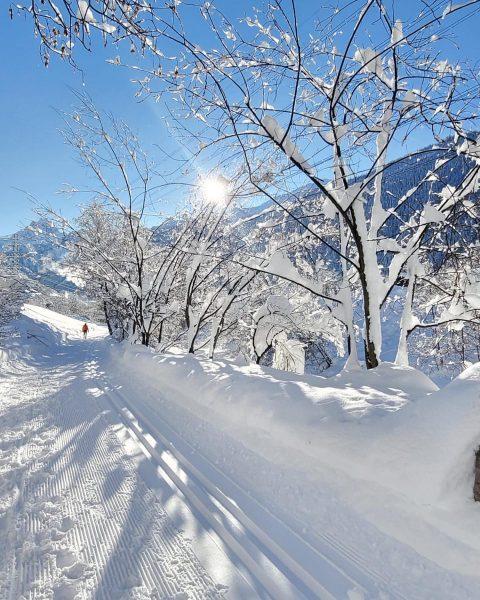 Traumhafte Winterlandschaft vor unserer Haustür! ❄️ Wir senden Ihnen ein bisschen Sonnenschein 🌞 ...