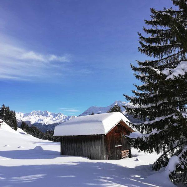 Traumtag😉 #dreamday #amazing #vorarlbergwandern #wintertime #bluesky #snow #mountains #montafon #meinmontafon #enjoytime #sports Bartholomäberg