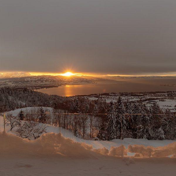 Sonnenuntergang 17.02 😊 die Tage werden langsam länger 👏 #bodenseepage #bregenz #bodenseeregion #vorarlberg Vorarlberg
