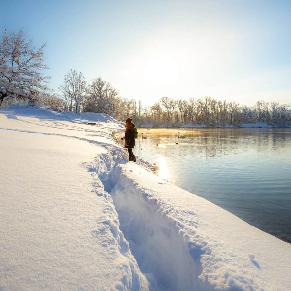 Winter am Baggersee . . . . #schnee #schneelandschaft #winterzauber #wintertime #snow #winter ...
