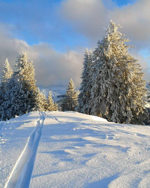 📍 Schönermannalpe Winter impressions I . . . . . @prilaga #vorarlberg #nature #vorarlberg❤️ #landscape #myvorarlberg #instagood...
