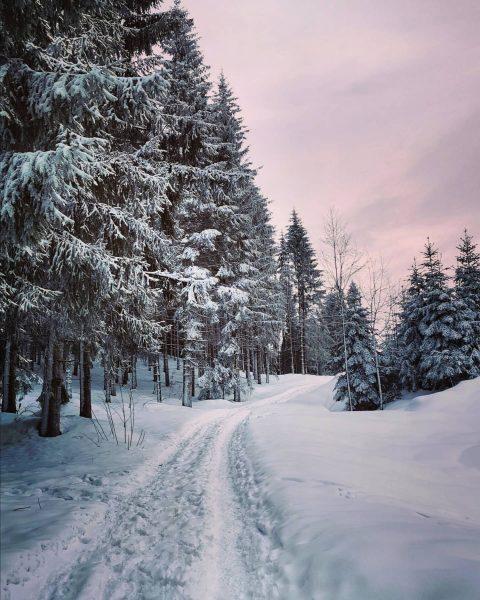 Today's #morningwalk ❄️☀️😍 #winterwonderland #snowwalk . . . #bregenzambodensee #bregenz #bodensee #pfänderbregenz #pfänder ...