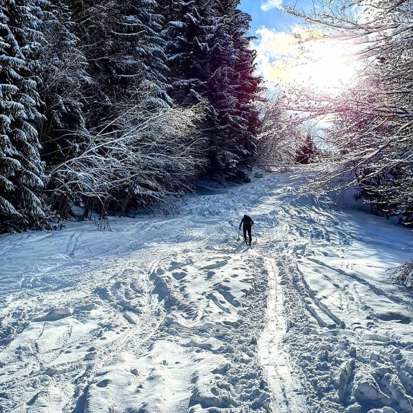 Skitouren Sonntag 🗻🎿 #skitouren #winterwonderland #bergliebe #bregenzerwald #visitbregenzerwald #hirschberg #weilsportspaßmacht #sportnatter #sportundmodenatter Hirschberg ...