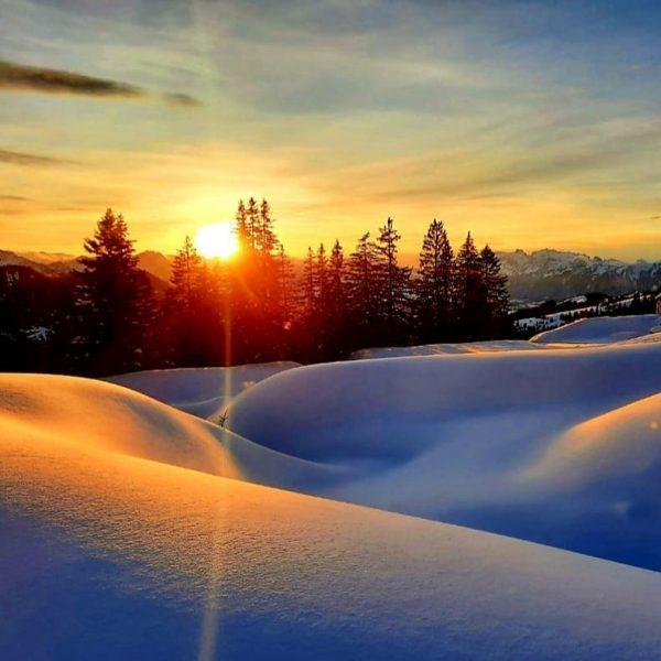 Let it snow ❄❄❄ #visitvorarlberg #vorarlbergwandern #vorarlbergphotography #venividivorarlberg #vorarlberg #vorarlberg #vorarlbergtourismus #visitaustria #gipfelkreuz ...
