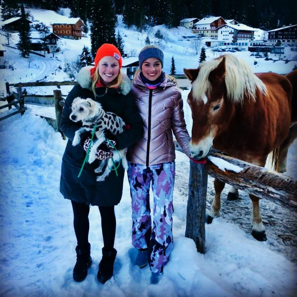 Visiting old Muscara at Hotel Mateera.. #childhoodmemories #haflinger #haflingerhorse #winterwandern #wanderlust #mountains #snow #gargellen #austria #holidays #2020...