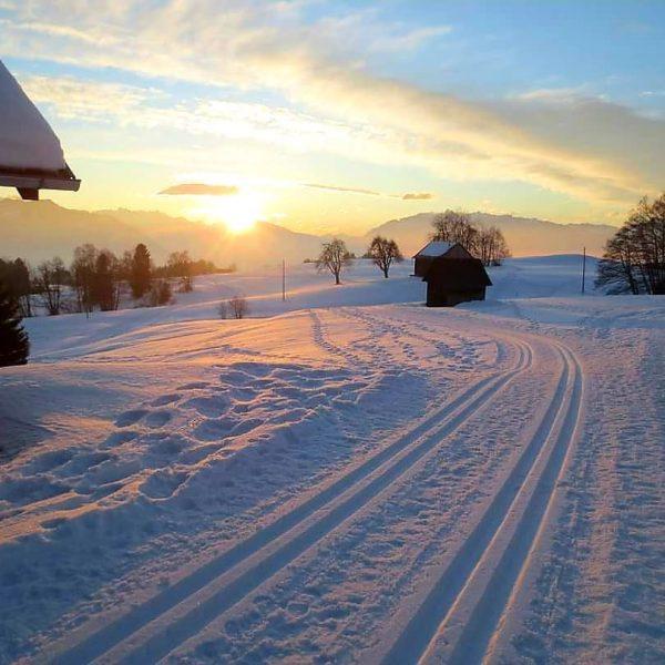 #wanderlust #wandern #meintraumtag #naturephotography #natur #naturvielfaltvorarlberg #naturliebe #naturerlen #visitvorarlberg #venividivorarlberg #meinvorarlberg #bergwelten #bergliebe #alpenverein #alpenliebe #alpenliebe_official #dünserberg...