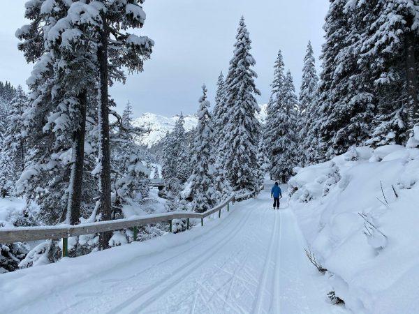 Wer geht mit eine Runde Langlaufen? ❄️ #crosscountryskiing #lechzuers #_the_alps #crosscountry #snow #winter ...