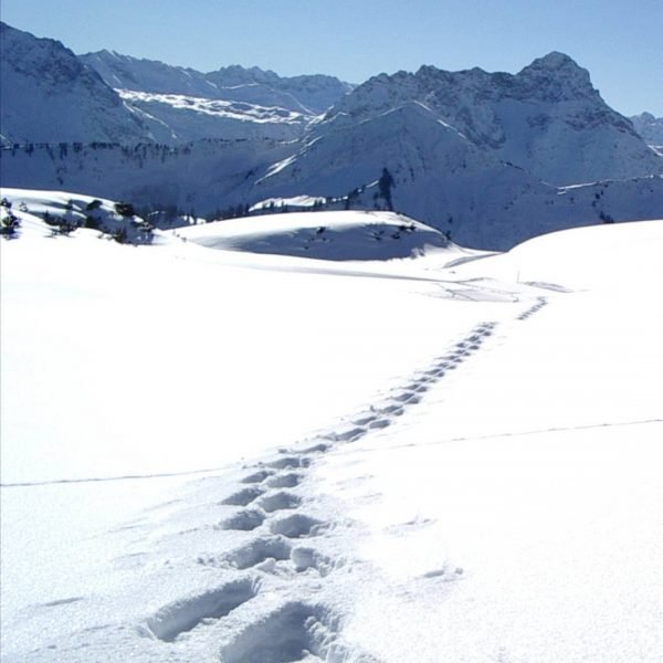 Spuren im Schnee... And those tracks are mine... Snowshoe hike on the Gottesacker ...
