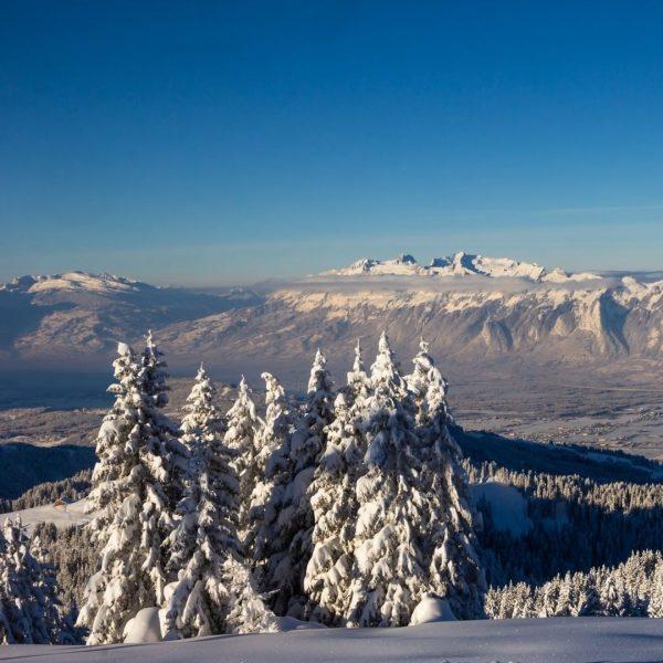 Skiing with a view in Laterns-Gapfohl 😎 #visitvorarlberg #myvorarlberg #winterwonderland #skiing #winterkodexvorarlberg #laterns ...