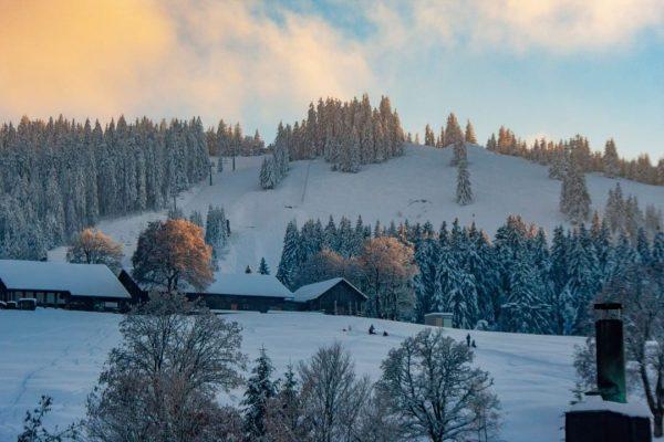 𝗧𝗮𝗸𝗲 𝗮𝘄𝗮𝘆 Wo ihr euch rund um das Skigebiet mit Abstand stärken könnt. ✅ Bödele Alpenhotel So...