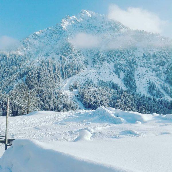 Was für ein herrliches Winterwetter. Es lädt dazu ein raus in die Natur ...