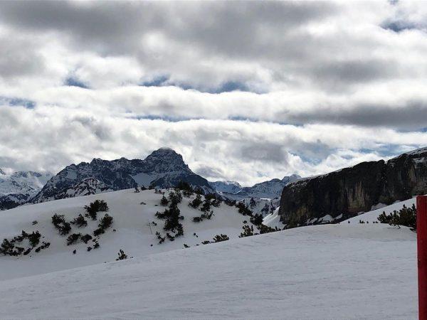 REMEMBER Februar 2020 Der Blick auf den großen Widderstein. @skischulehirschegg @skischule.mittelberg @skischuleseiteegg @skischuleriezlern ...