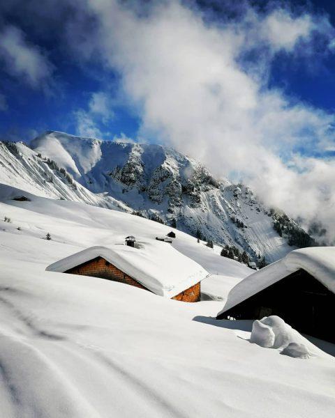 Skitour auf das Zafernhorn Blick Richtung Hochlicht und Blasenka #bregenzerwald #bregenzerwald_fan #skitour #damüls ...