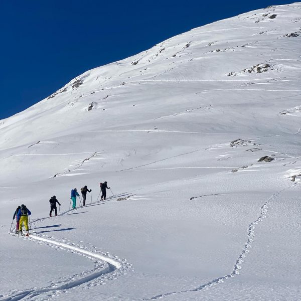 Now is the best time to explore the mountains. To our locals, with ...