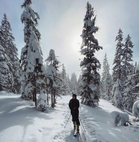 Enjoying the spirit of nature 🌲🏔 #mountains #skitouring #nature #snow #ländle #winterwonderland #wintersport ...