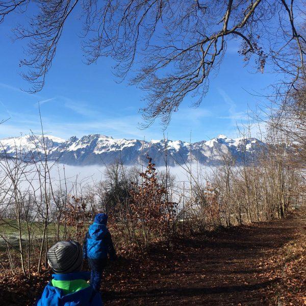 Das Wochenende ist da! Wie wäre es mit einem Besuch im Wildpark Feldkirch? ...