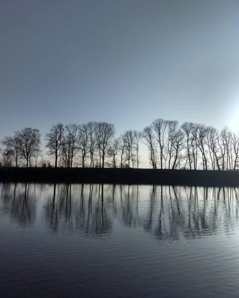 🐦Auch am Alten Rhein ist alles noch beim alten...sehr beruhigend . #alterrhein #alterrheinlustenau #amwasser #onthewater #amwasseristesamschönsten #fahrradtour...