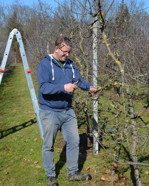 Bei schönstem Wetter hat Michael heute mit der Pflege unserer Obstbäume begonnen. Denn ...