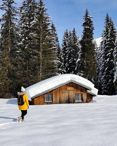 Vermutlich eines der letzten verschneiten Bilder für diesen Winter. ❄️ Genießt es! #daypackscrew ...