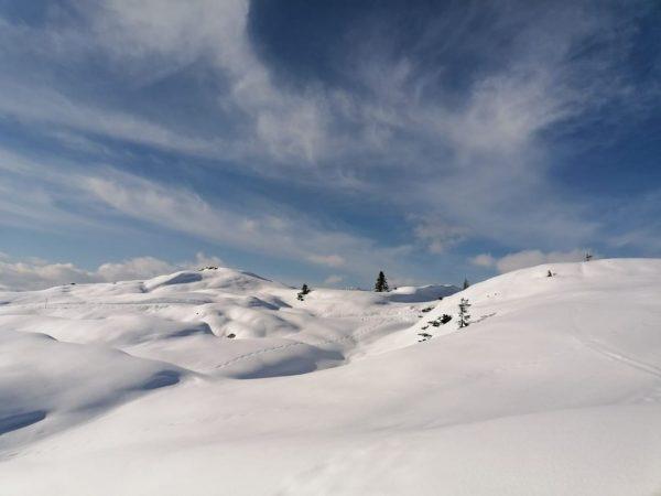 Bei dieser wunderschönen Schneedecke fühlt sich das Schneeschuhwandern fast an wie auf Wolken ...