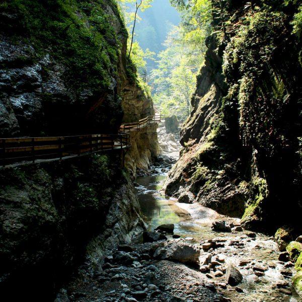 #rappenlochschlucht #austria #österreich #vorarlberg #dornbirn #nature #photooftheday #canonphotography #canoneos #travel #travelphotography #travelgram #nature ...