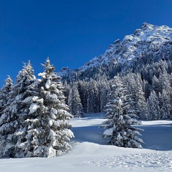 ❄️Der Winter ist nochmal zurück gekehrt. Leider wirds mit einer Öffnung in dieser ...