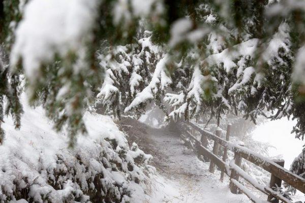 Grüaß Di Schnee, schön, dass Du wieder da bist! ❄👋 Laut Wetterbericht gehört ...