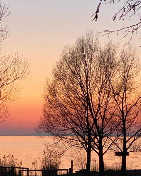 Kaiserstrand Lochau #sunset #sonnenuntergang #landscape #landscapephotography #naturephotography Austria