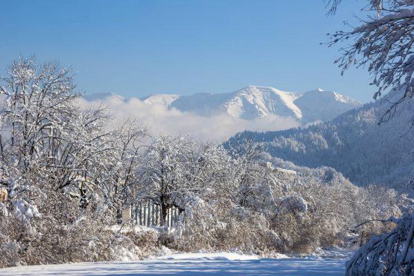 Der #winter ist zur im #Ländle #vorarlberg Ganz so viel Schnee wie im ...