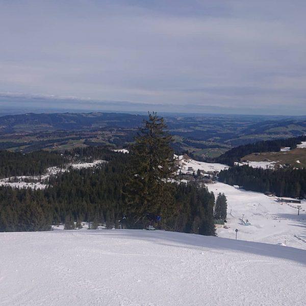 ⛷️ Perfekte Pisten und angenehmen Temperaturen im Familienskigebiet Bödele ⛷️ ⛷️❗⛷️❗⛷️❗⛷️❗⛷️❗⛷️❗⛷️❗⛷️❗⛷️❗⛷️ #boedeleskiing #boedele #skifahren #schifahren #familienskigebiet #familienskigebietbödele...