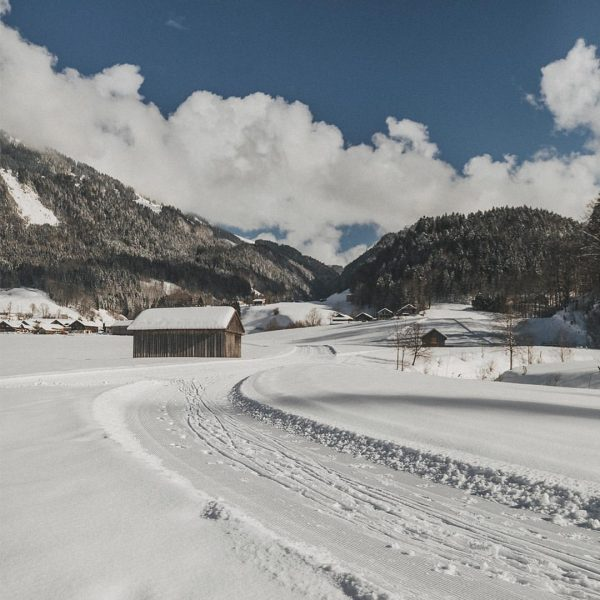 Embracing those sunny days. Enjoy a beautiful winter walk, breathe in some fresh ...