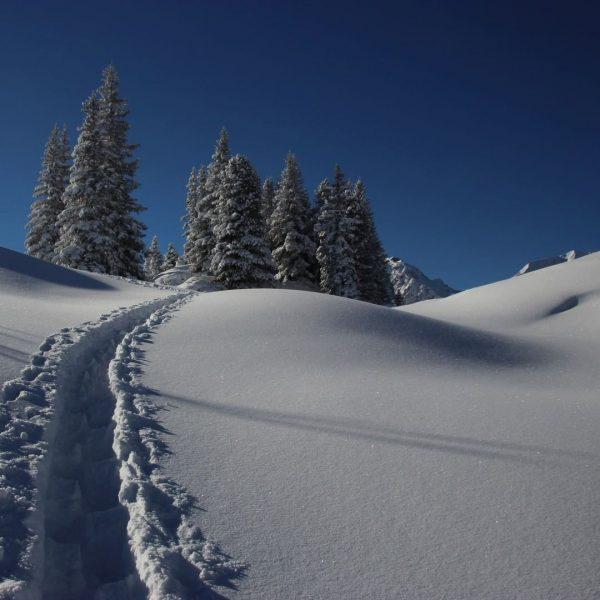 ❄️ Winter is back! Wir wünschen euch einen guten Start in den Tag! ...