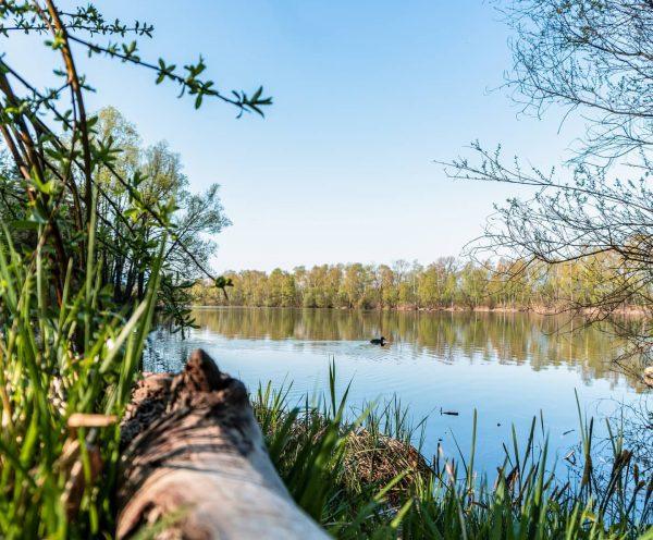 🔜 #vorarlbergernaturpicknicks– coronataugliche Outdoor-Veranstaltungen ab April 🌷🐦🏛 Lange mussten wir warten, nun dürfen ...