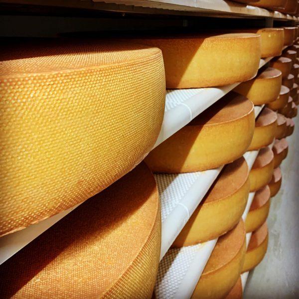 Ein Blick in unseren Käsekeller. Hier reift unser #hittisauerbergkäse 🏔🧀🇦🇹 über Monate zum Genuss. #sennereihittisau #käseausdembregenzerwald #bregenzerwälderbergkäse...