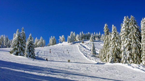 ⛷Wochenendbetrieb⛷ Beste 🏂Pistenverhältnissen am frisch verschneiten Bödele. Betrieb am Freitag, Samstag und Sonntag von 8:30 bis 16:00...