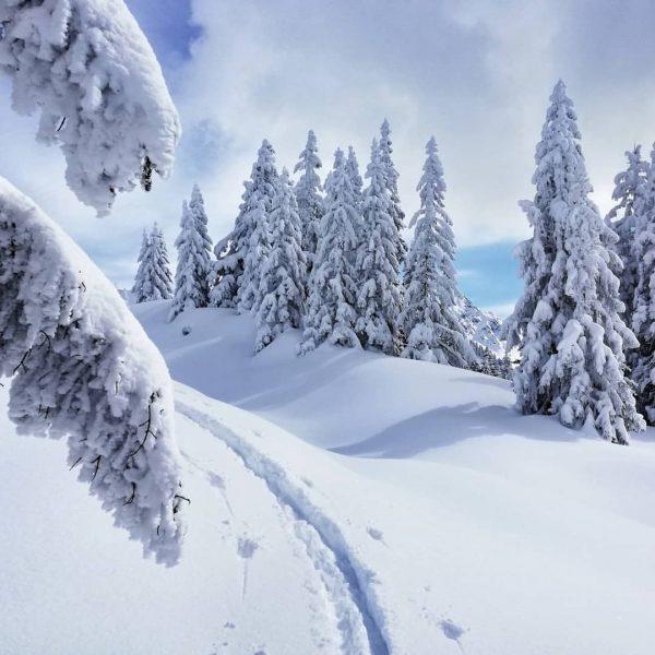 Wer den RECHTEN Weg finden will muss auch mal LINKS abbiegen 🔄 #rauszeit #rauszeitmontafon #achtsamkeit #montafon #achtsamwandern...