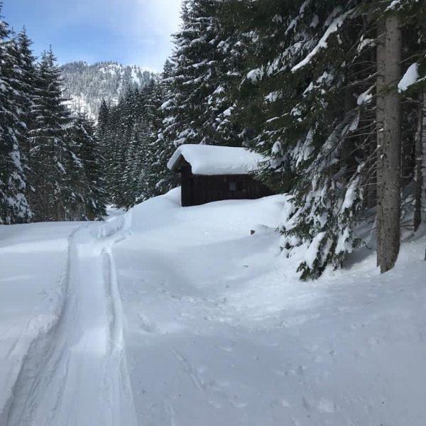 Nicht nur im Sommer eine Wanderung wert. Nenzigast #skitouring #offpiste #tiefschnee #märz2021 #funinthesun ...