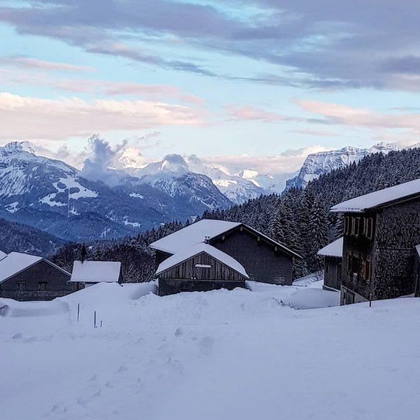 Zum heutigen Frühlingsbeginn zeigte sich der Winter in Schwarzenberg/Bödele nochmals von seiner schönsten ...