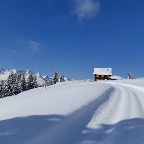 Frühlingsbeginn und trotz Saisonende müssen wir unbedingt diese traumhaften Winterfotos mit euch teilen ...