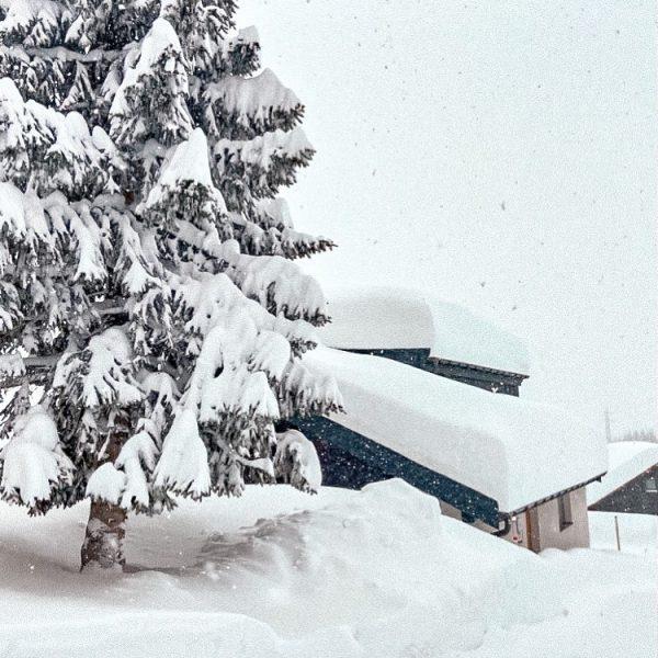 . . 𝗘𝗦 𝗪𝗜𝗡𝗧𝗘𝗥𝗧 #skiing #winter #skihotel #snow #snowing #snowingfeelings #charminghotel #apartment #stubenrocks #arlberg Stuben, Vorarlberg, Austria