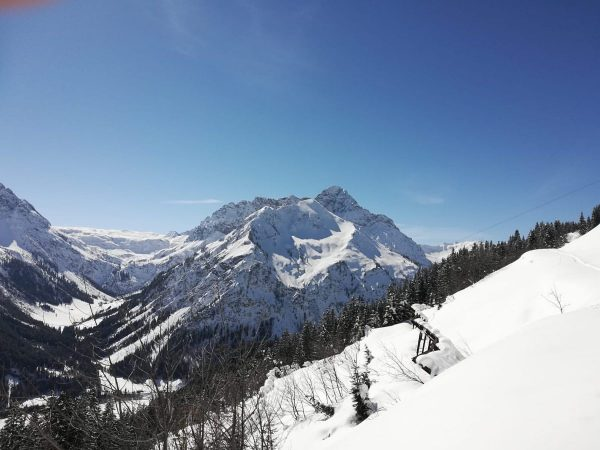 Traumtägle für a Skitour! 🤍🌷 #skischulemittelberg #ski #skitouring #skiing #skivorarlberg #snow #snowboarding #snowday ...