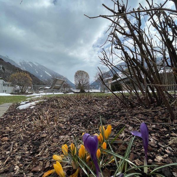 Frühlingsbeginn - ganz typisch mit Sonne, Wolken, Schnee UND den ersten Farbtupfern im ...