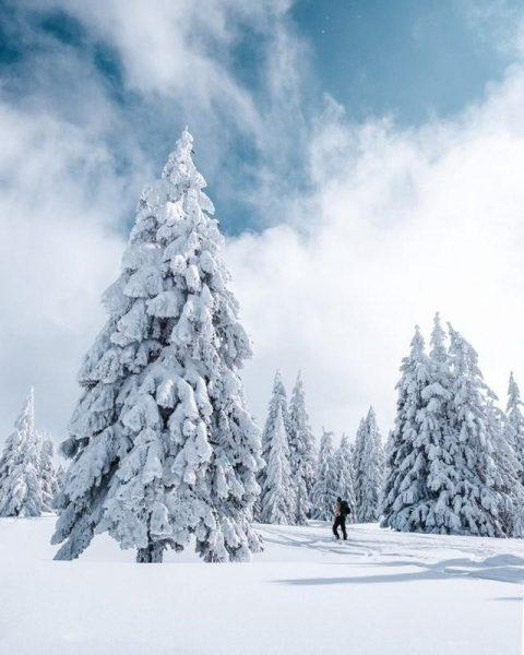 Wie war das nochmal mit dem Frühlingsanfang? 📸 @ramonathh #wintercomeback #winter #winterwonderland #schnee ...