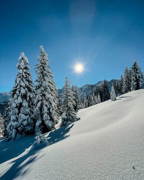 Zuhause ist wo die Berge sind ☀️🗻 #derbergruft #schöneswochenende Hotel Hubertus Mellau
