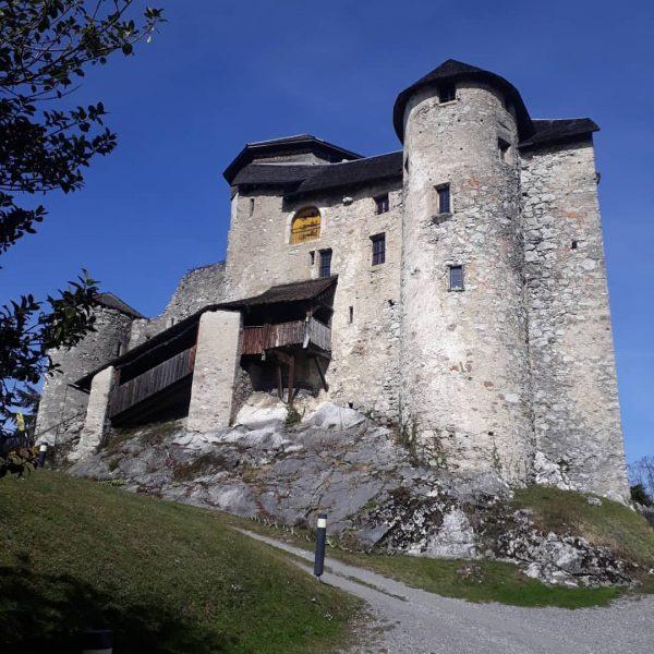 Die Burg Glopper in der Emsreute Neben der Ruine Altems auf dem Hohenemser ...