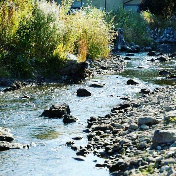 Die Sonne lacht, der Mühlbach plätschert – eine wunderbare Erholungsinsel mit direktem Wasserzugang ...