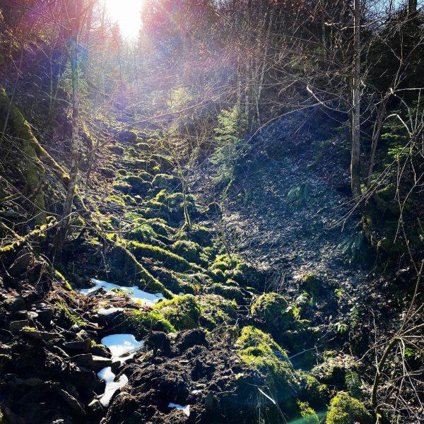 Vasárnapi túra 🥾 #vorarlbergwandern #dornbirn #rappenlochschlucht #wasserfall #vízesés #austria🇦🇹 #magyarokkülföldön Rappenlochschlucht